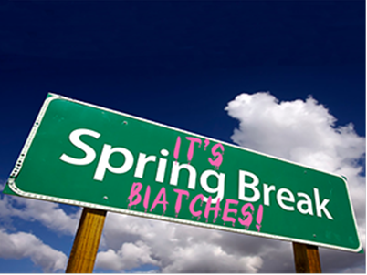 Photo Of Spring Break Biatches Sign