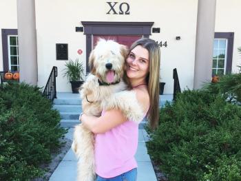 Sorority House Dog